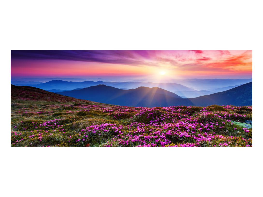 Slika planinskog rascvijetalog krajolika (K011322K10040)
