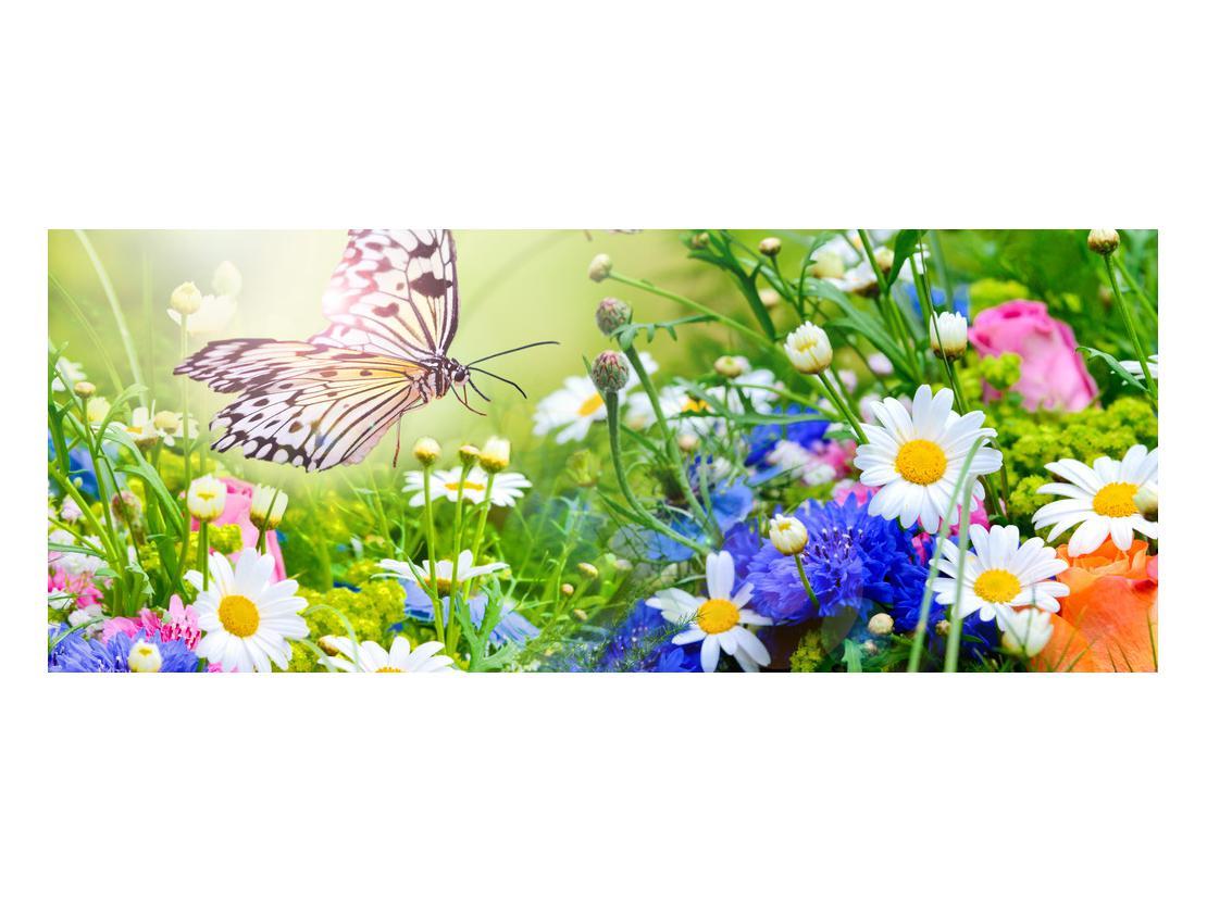 Slika poletnih cvetov z metuljem (K012220K10040)