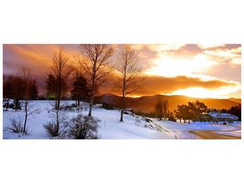 Obraz zimní krajiny (F000031F10040)