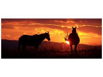 Obraz koní (F000475F10040)