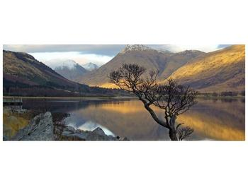 Obraz hor u jezera (F000686F10040)
