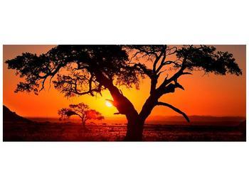 Obraz ohnivého západu slunce (F001288F10040)