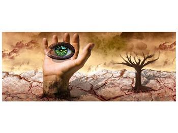 Obraz oka na dlaňi (F001485F10040)