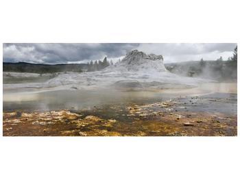 Obraz jev přírody (F001553F10040)