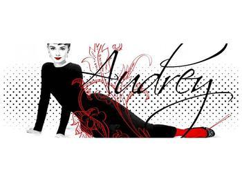 Obraz - Audrey Hepburn (F002154F10040)