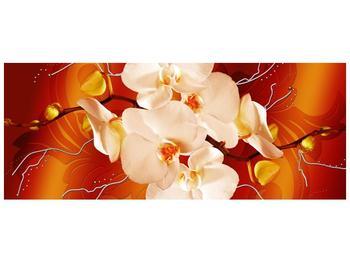 Obraz bílých orchidejí (F005694F10040)