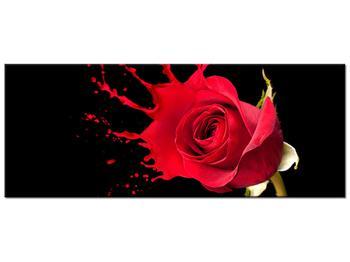 Obraz ruže (K011216K10040)