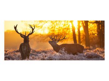 Obraz jelenů (K011267K10040)