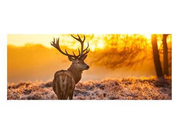 Obraz jelena (K011281K10040)