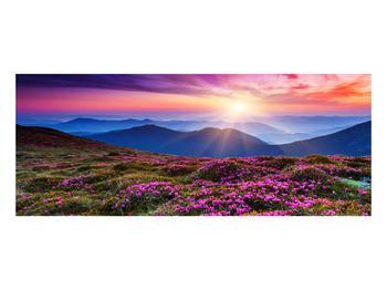 Obraz horské rozkvetlé krajiny (K011322K10040)