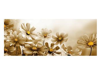 Obraz květů (K011484K10040)