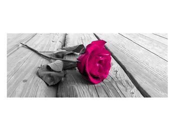 Obraz růže (K011856K10040)