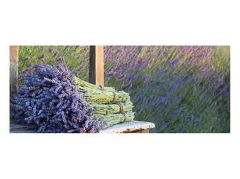 Obraz levandulových svazků (K012032K10040)