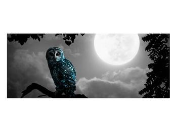 Tablou cu bufnița nocturnă (K012185K10040)