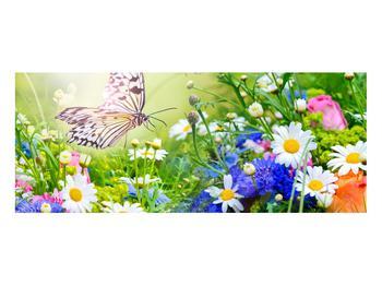 Obraz letních květů s motýlem (K012220K10040)