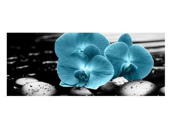 Tablou cu flori de orhidee albastre (K012398K10040)