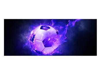 Tablou cu mingea de footbal în plasă (K014164K10040)
