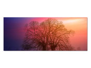 Obraz stromov v hmle (V020088V10040)