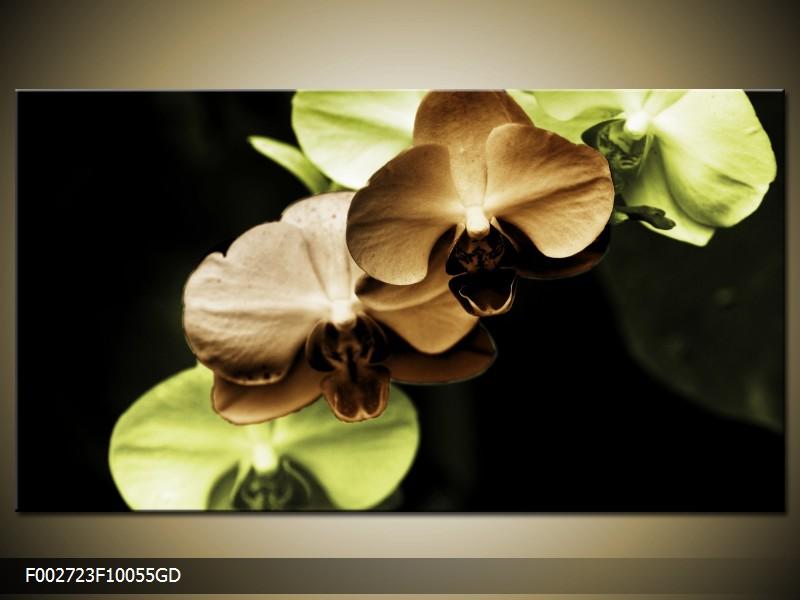 Obraz hnědých a zelených orchideí  (F002723F10055GD)