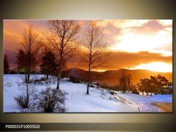 Obraz zimní krajiny (F000031F10055GD)