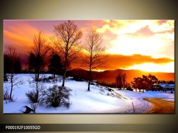 Obraz zimní krajiny (F000192F10055GD)