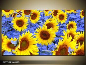 Obraz slunečnic (F000619F10055GD)