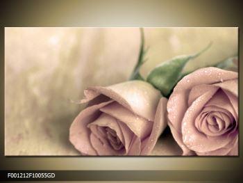 Obraz jemných růží (F001212F10055GD)