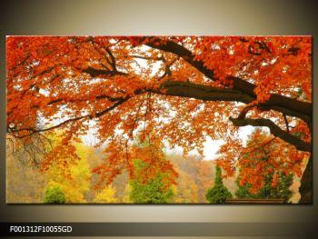 Moderný sklenený obraz F001312F10055GD (F001312F10055GD)