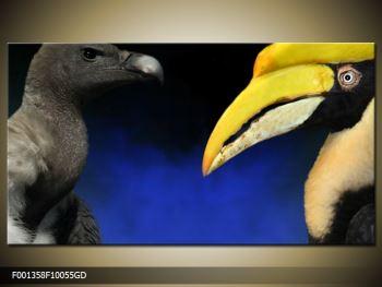 Obraz ptačích zobáku (F001358F10055GD)