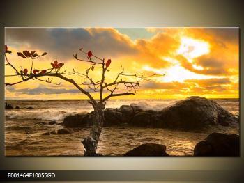 Moderný sklenený obraz F001464F10055GD (F001464F10055GD)