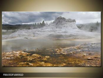 Obraz jev přírody (F001553F10055GD)