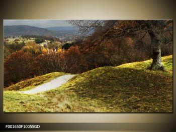 Obraz podzimního pahorku (F001650F10055GD)