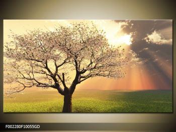 Moderný sklenený obraz F002280F10055GD (F002280F10055GD)