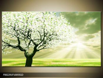 Obraz stromu na jaře (F002291F10055GD)