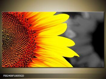 Obraz květu slunečnice (F002400F10055GD)