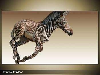 Obraz běžící zebry (F002416F10055GD)
