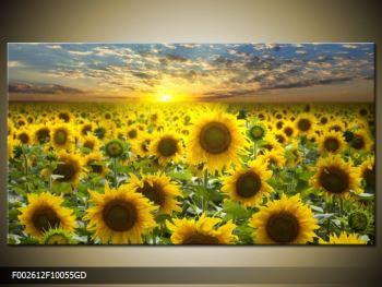 Obraz slunečnic při západu slunce  (F002612F10055GD)