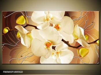 Krásný obraz orchidejí (F005693F10055GD)