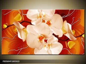 Obraz bílých orchidejí (F005694F10055GD)
