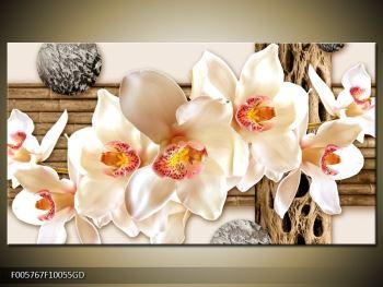 Moderní obraz F005767F10055GD (F005767F10055GD)