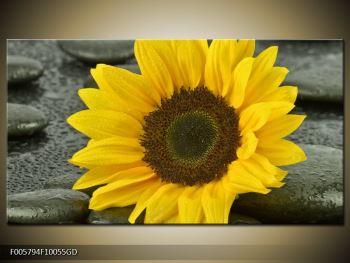 Moderní obraz F005794F10055GD (F005794F10055GD)