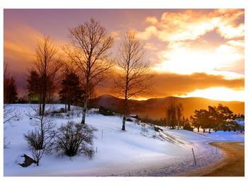 Obraz zimní krajiny (F000031F10070)