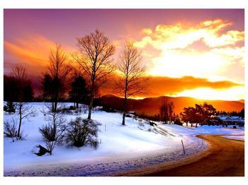 Obraz zimní krajiny (F000192F10070)