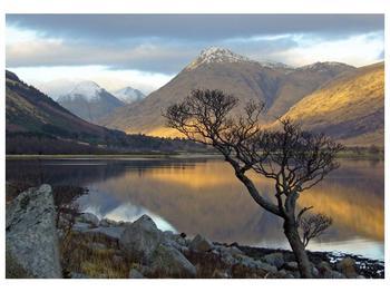 Obraz hor u jezera (F000686F10070)