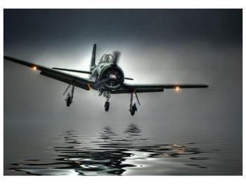 Obraz letadla  (F001593F10070)