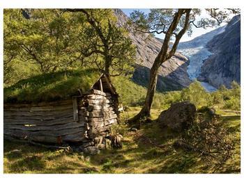 Obraz horské chatrče (F001636F10070)