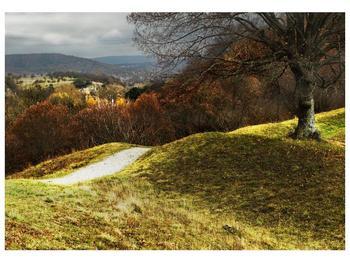 Obraz podzimního pahorku (F001650F10070)