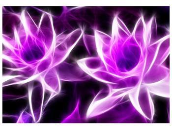Moderní obraz květin (F001725F10070)