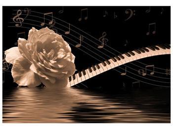 Černobílý obraz růže a klavíru (F001875F10070)