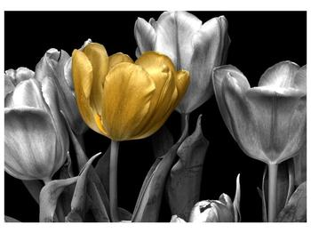 Obraz zlaté květiny  (F003624F10070)